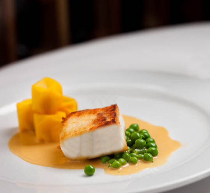 Sear-Roasted Halibut with Blood Orange Salsa • The ...
