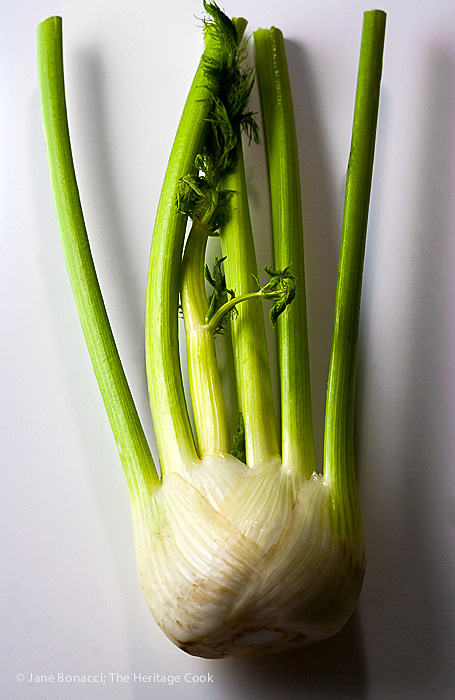 A fresh bulb of fennel ready to be added to the salsa