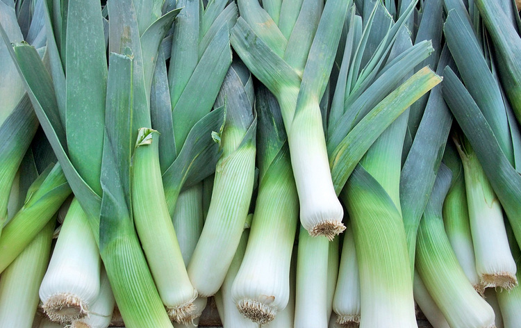 Stacked Leeks at the market