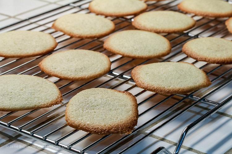 hot from the oven; Vanilla Bean Cannoli Cookies (Gluten-Free) © 2018 Jane Bonacci, The Heritage Cook