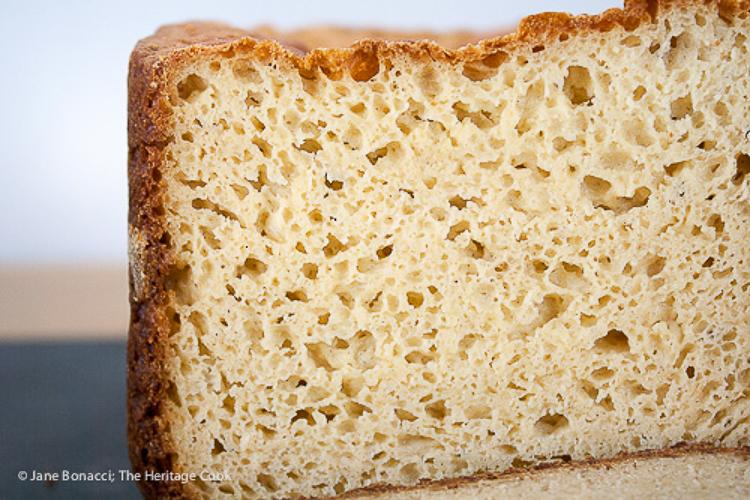 Slice of gluten free bread